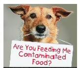 Natural Dog & Cat Food Delivered To Your Door! No Recalls