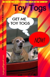 Toy Togs - THE LATEST FASHION CRAZE IN THE COUNTRY!