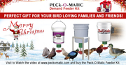 Perfect Christmas Gift for Bird Loving Families & Friends - Peckomatic