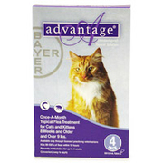 Buy Advantage for Cats - Flea Control for Cats