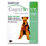 Buy Capstar for Dogs - Flea Treatment Tablet